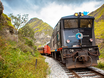Devils Nose Train Tours