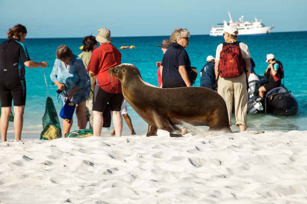 Galapagos tours enjoy