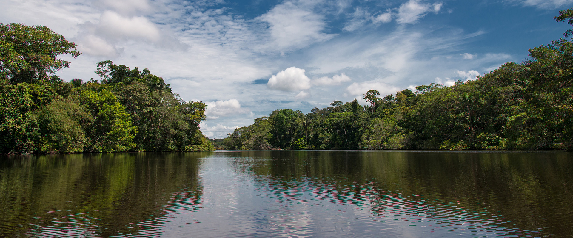 Amazon River Tours