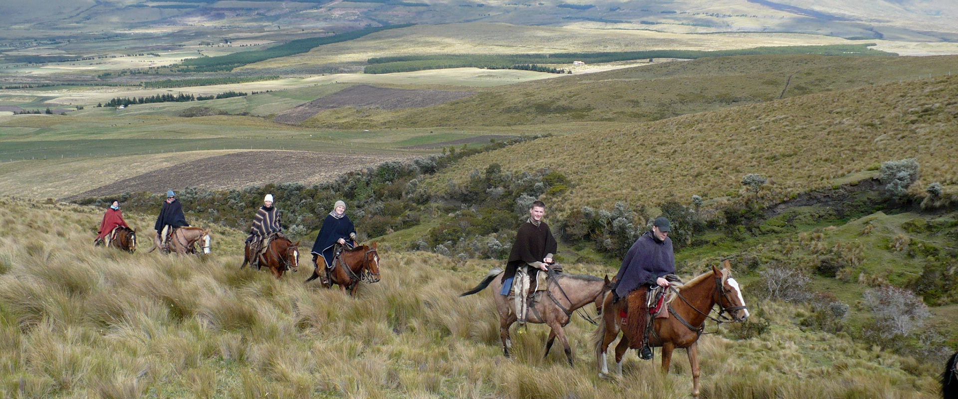 Cotopaxi Horseback Riding