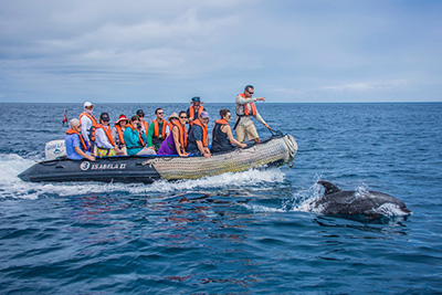 Isabella II Southern Galapagos Tour 5 Days 4 Nights