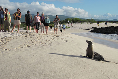 Eastern Galapagos 5 Days 4 Nights