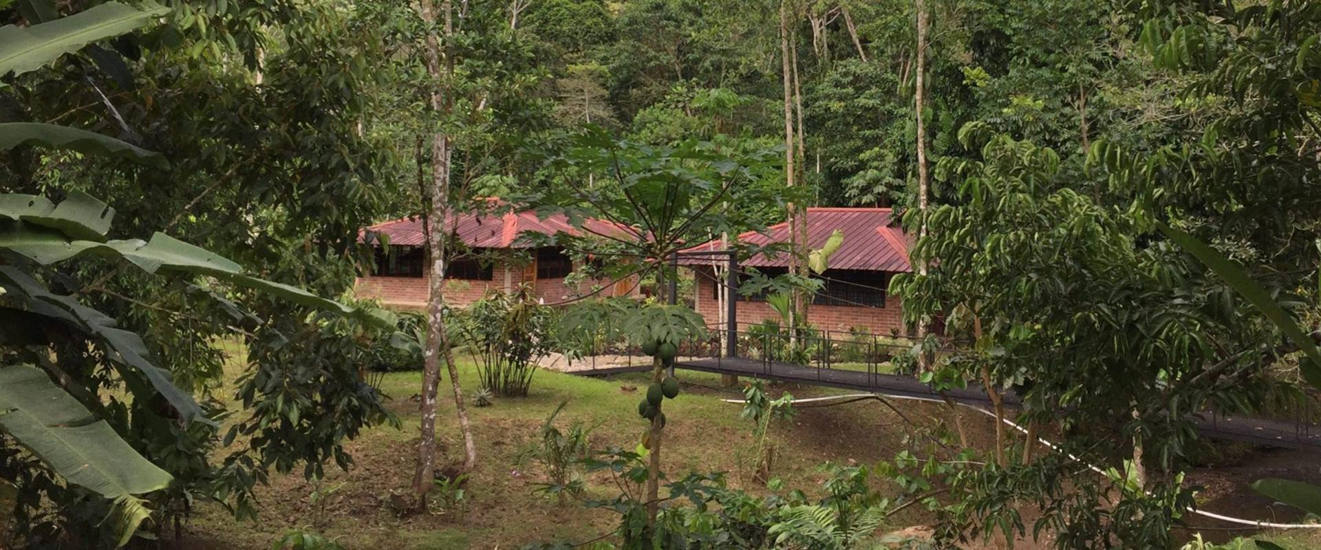 Yachana Lodge Amazon Tours